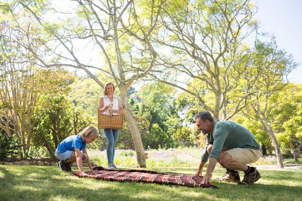 Filho pai toalha de piquenique mãe cesta parque Foto stock © wavebreak_media