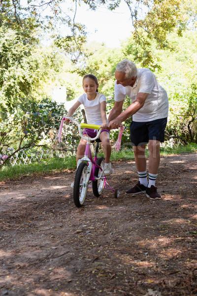 Dziadek nauczania wnuczka rower lasu człowiek Zdjęcia stock © wavebreak_media
