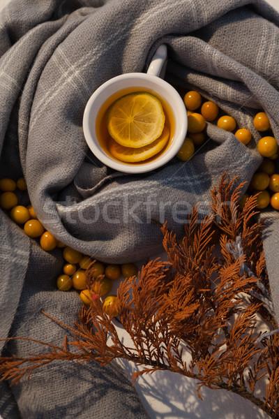 Autumn berry, lemon tea and leaves on blanket Stock photo © wavebreak_media