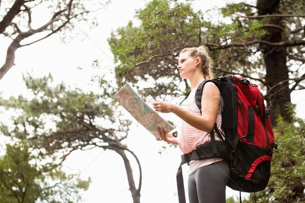 Blond wandelaar kaart zoeken pad natuur Stockfoto © wavebreak_media
