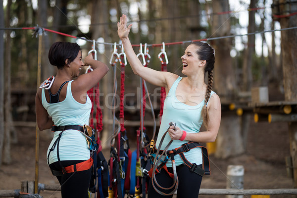Two female friends giving high five to each other after completing zip line Stock photo © wavebreak_media