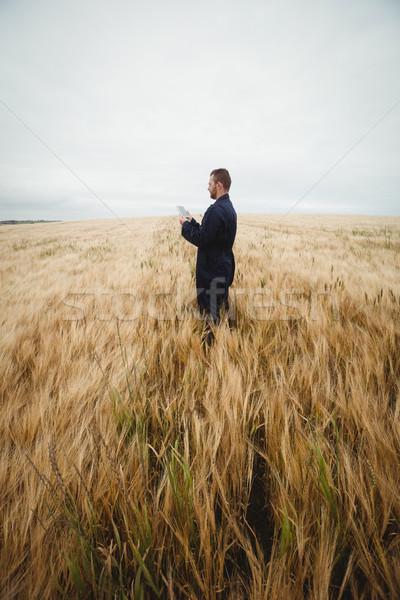 Сток-фото: фермер · цифровой · таблетка · области · небе