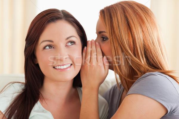 Mulher segredo sala de estar sorrir reunião Foto stock © wavebreak_media