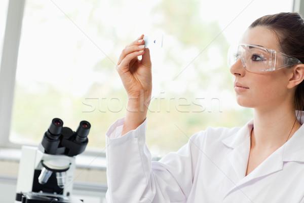 Belo ciência estudante olhando microscópio deslizar Foto stock © wavebreak_media