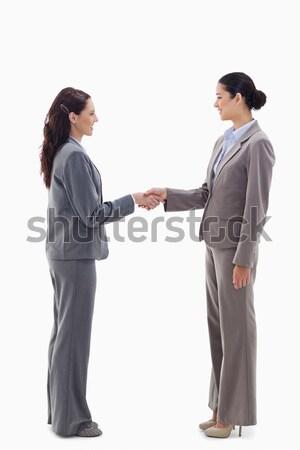 Kettő üzletasszonyok kézfogás fehér kezek férfi Stock fotó © wavebreak_media