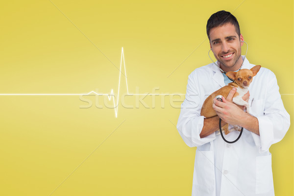 Composite image of vet holding chihuahua Stock photo © wavebreak_media