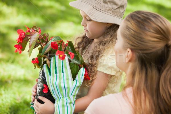 Anya lánygyermek virágcserép park oldalnézet nő Stock fotó © wavebreak_media