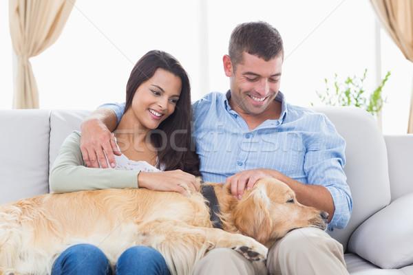 Couple stroking Golden Retriever on sofa Stock photo © wavebreak_media