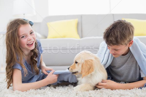 Foto stock: Hermanos · jugando · cachorro · feliz · casa