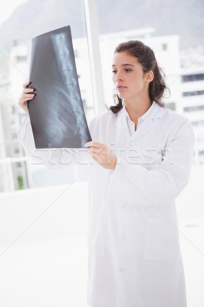 Brünette Arzt xray Ergebnisse Prüfung Zimmer Stock foto © wavebreak_media