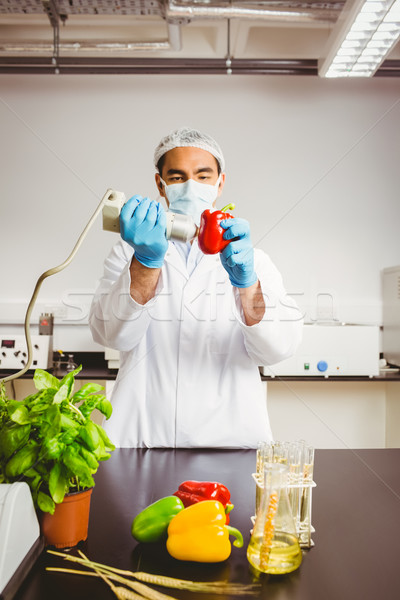 Food scientist using device on pepper Stock photo © wavebreak_media