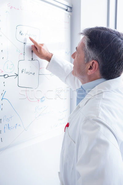 Focused scientist pointing equation on whiteboard Stock photo © wavebreak_media