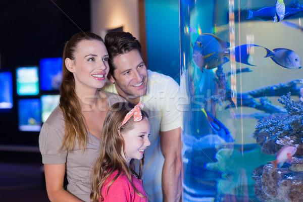 Happy family looking at fish tank Stock photo © wavebreak_media