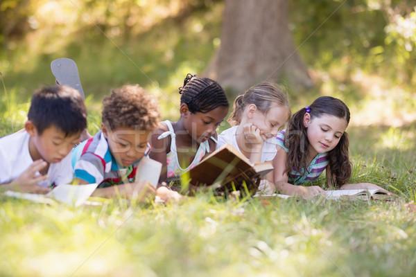 группа друзей чтение книга травянистый области Сток-фото © wavebreak_media