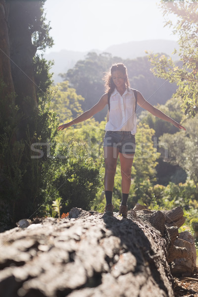 Young female hiker walking on log in forest Stock photo © wavebreak_media