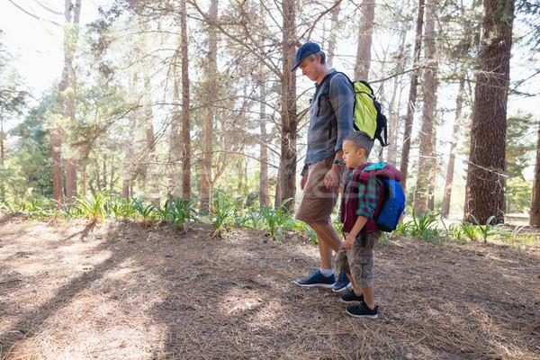 Yandan görünüş baba oğul yürüyüş orman el ele tutuşarak ağaç Stok fotoğraf © wavebreak_media