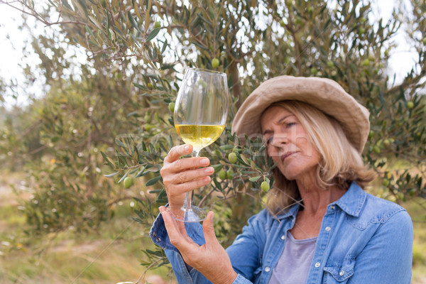 Woman looking at glass of wine Stock photo © wavebreak_media
