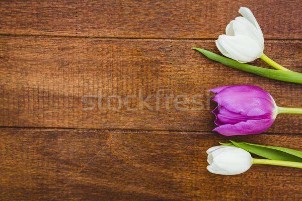 Az mor beyaz çiçekler ahşap büro çiçek Stok fotoğraf © wavebreak_media