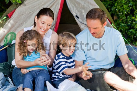 Family camping in the garden Stock photo © wavebreak_media