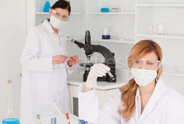 Dark-haired and blond-haired scientists carrying out an experiment in a lab Stock photo © wavebreak_media
