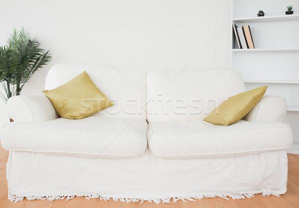 Beyaz deri kanepe oturma odası ev duvar Stok fotoğraf © wavebreak_media