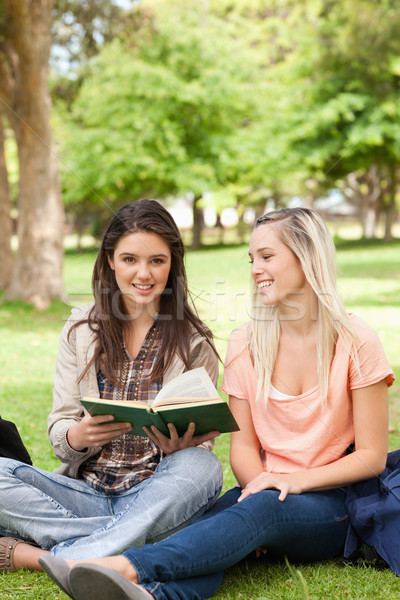 Teo teenagers sitting with a textbook in a park Stock photo © wavebreak_media