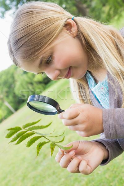 Meisje onderzoeken bladeren vergrootglas park jong meisje Stockfoto © wavebreak_media