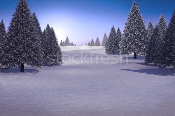 Paisaje abeto árboles digitalmente generado forestales Foto stock © wavebreak_media