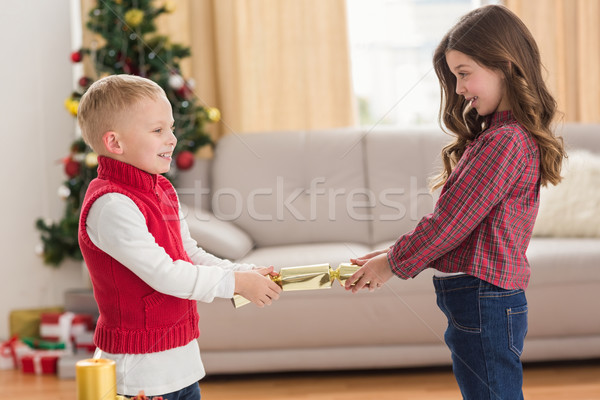 Festive siblings pulling a cracker Stock photo © wavebreak_media