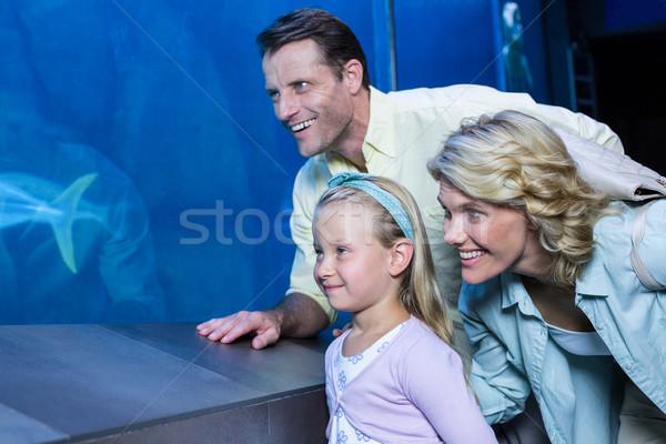 Boldog család néz hal tank akvárium boldog Stock fotó © wavebreak_media