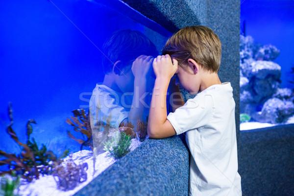 Jonge man tank natuur kind zee Stockfoto © wavebreak_media
