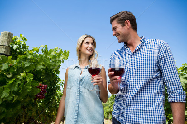Low angle view of couple holding winnglasses at vineyard Stock photo © wavebreak_media
