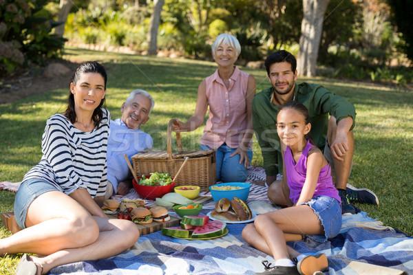 Zdjęcia stock: Portret · szczęśliwą · rodzinę · piknik · parku · kobieta