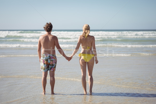 Rear view of couple holding hands while standing at beach Stock photo © wavebreak_media