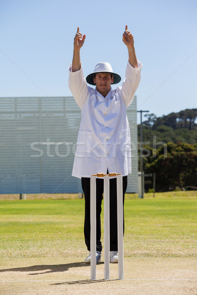 Cricket umpire signalling six runs during match Stock photo © wavebreak_media