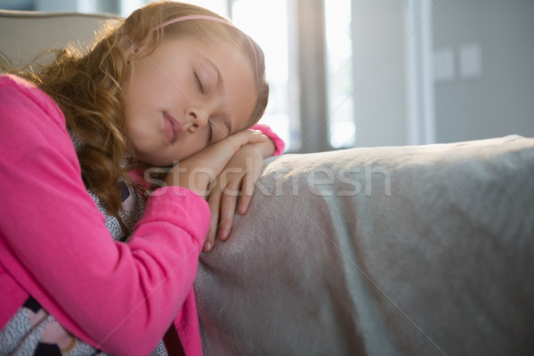 Menina adormecido sofá sala de estar casa internet Foto stock © wavebreak_media