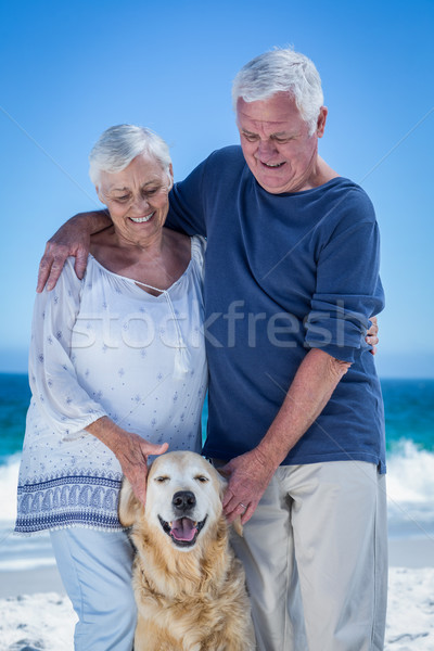 Cute mature couple petting their dog Stock photo © wavebreak_media