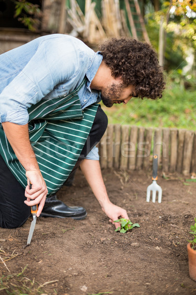 Giardiniere fuori serra maschio Foto d'archivio © wavebreak_media