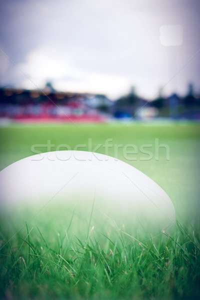 Image ballon de rugby herbe Photo stock © wavebreak_media