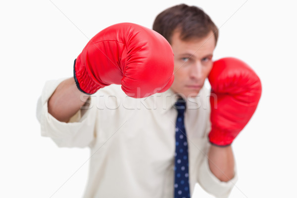 Punching businessman with boxing gloves against a white background Stock photo © wavebreak_media