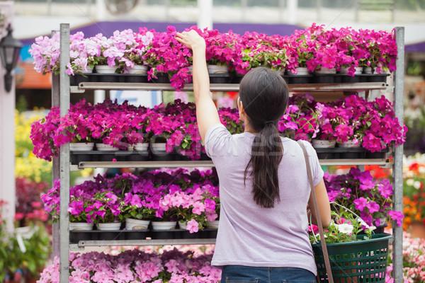 Kobieta roślin półki kwiaty uśmiech Zdjęcia stock © wavebreak_media