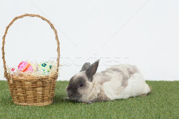 Easter rabbit with basket of eggs on grass Stock photo © wavebreak_media