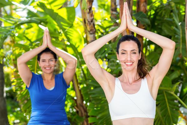 Nyugodt nő edző jóga napos idő boldog Stock fotó © wavebreak_media