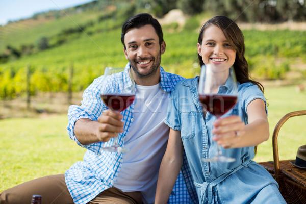 Foto stock: Retrato · feliz · casal · oferta · copos · de · vinho · vinha