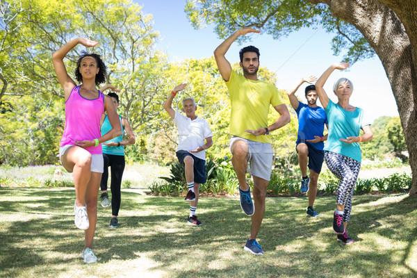 Grup insanlar egzersiz park ağaç adam Stok fotoğraf © wavebreak_media