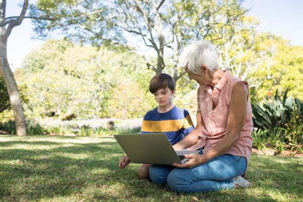 Büyükanne torun dizüstü bilgisayar kullanıyorsanız park bilgisayar Stok fotoğraf © wavebreak_media