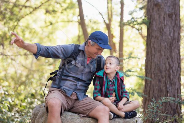 Filho pai sessão rocha indicação longe floresta Foto stock © wavebreak_media