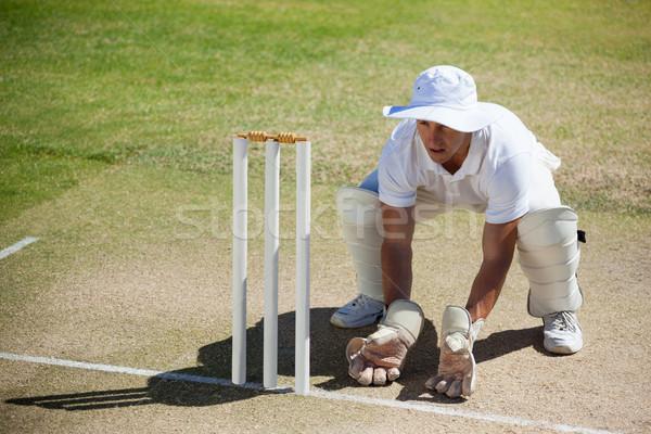 High angle view of wicketkeeper crouching behind stumps Stock photo © wavebreak_media