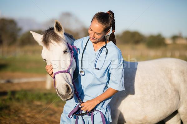 женщины ветеринар лошади Постоянный ранчо женщину Сток-фото © wavebreak_media