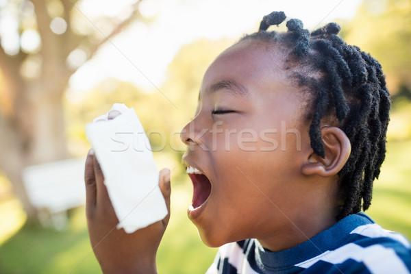 Child using asthma object Stock photo © wavebreak_media